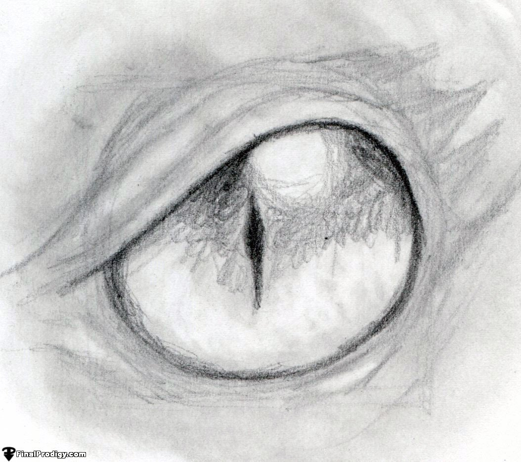 Go Over The Iris And The Outline Of The Eye Using The 8b Pencil