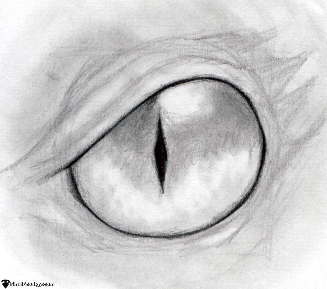 Sharpen The Dark Lines Using The F And 8b Pencils Blend In The Eye Shading  Using A Blending Stump