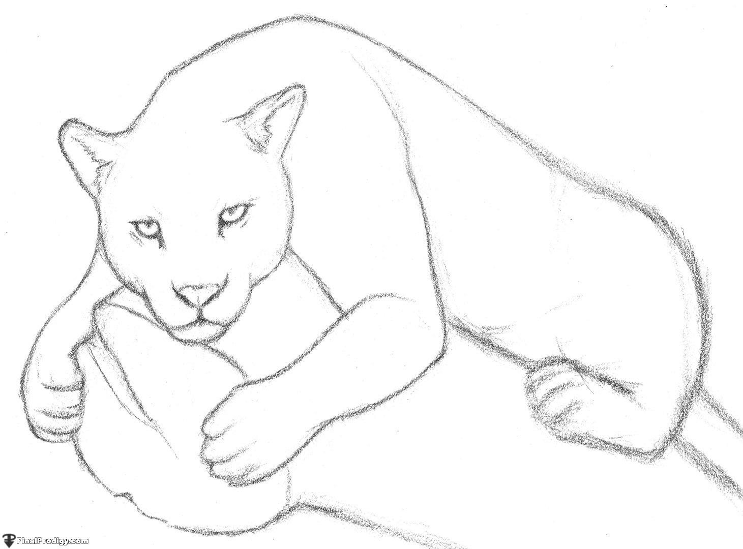 jaguar drawing - photo #16
