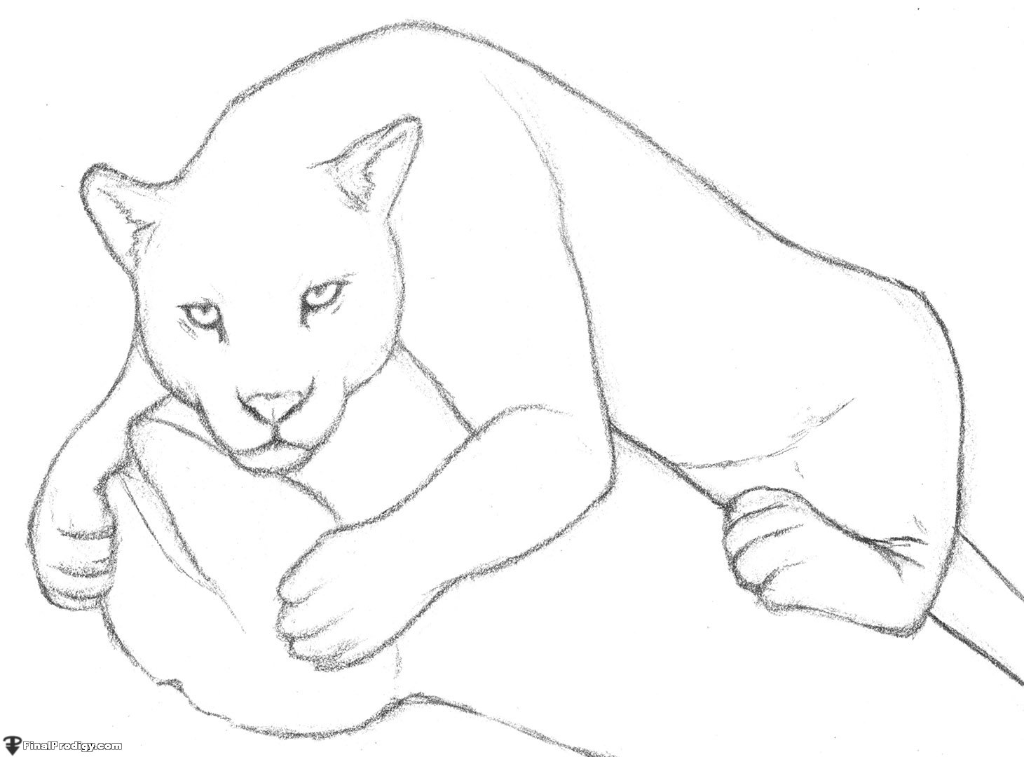 jaguar finalprodigy 5jpg