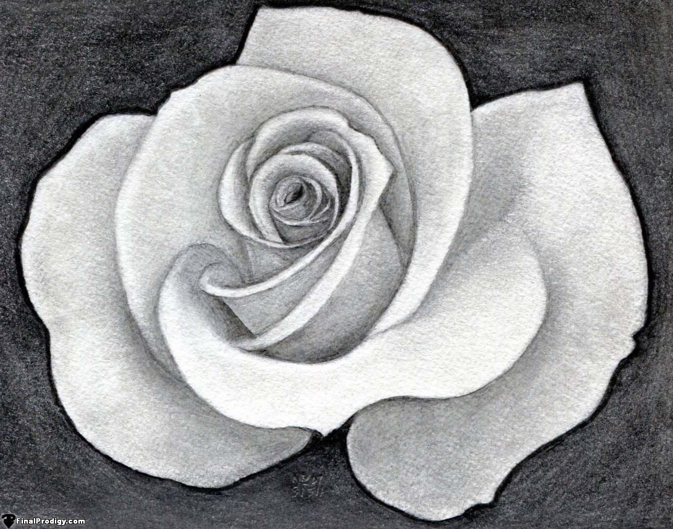 How to draw a pretty rose for How to draw a pretty flower easy